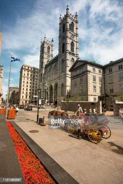 notre dame basilica, montreal, quebec, canada - notre dame de montreal stock photos and pictures
