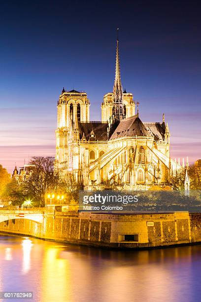 notre dame cathedral at dusk, paris, france - paris island stock photos and pictures