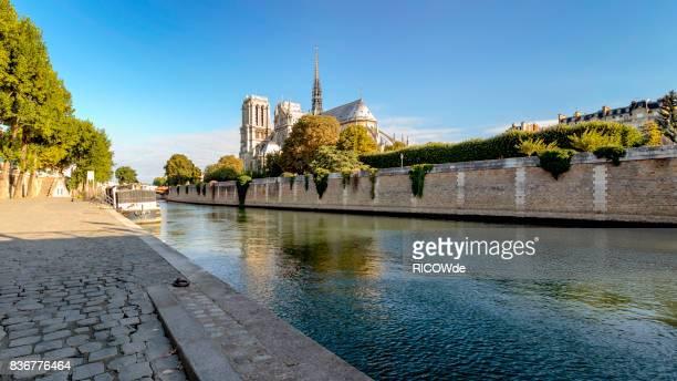 notre dame cathedral at sunrise, paris, france - fluss seine stock-fotos und bilder