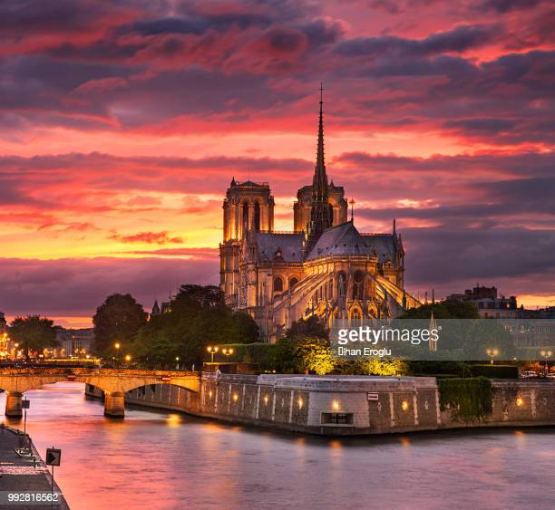 notre dame cathedral at sunset, paris, france - notre dame de paris stock photos and pictures