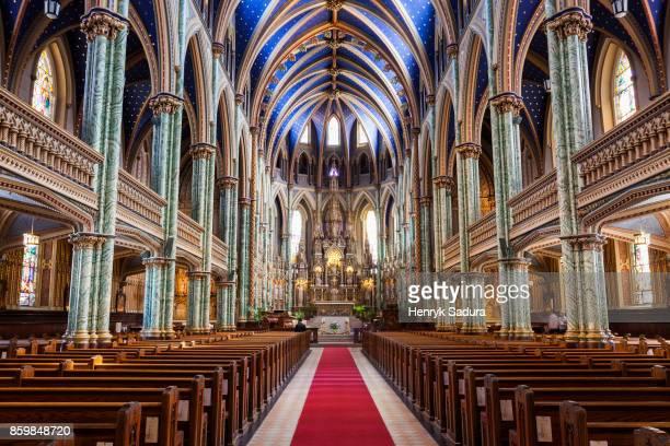 notre dame cathedral basilica in ottawa - ottawa stock-fotos und bilder