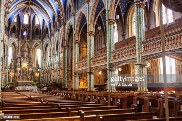 notre dame cathedral basilica in ottawa - ontario kanada stock-fotos und bilder