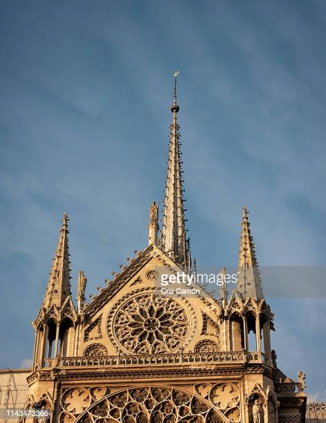 notre dame cathedral facade - cris cantón photography fotografías e imágenes de stock