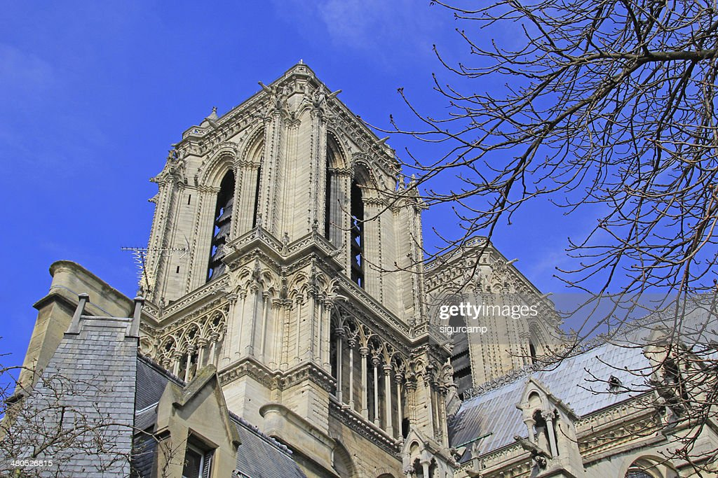 Notre dame Cathedral in Paris. : Bildbanksbilder
