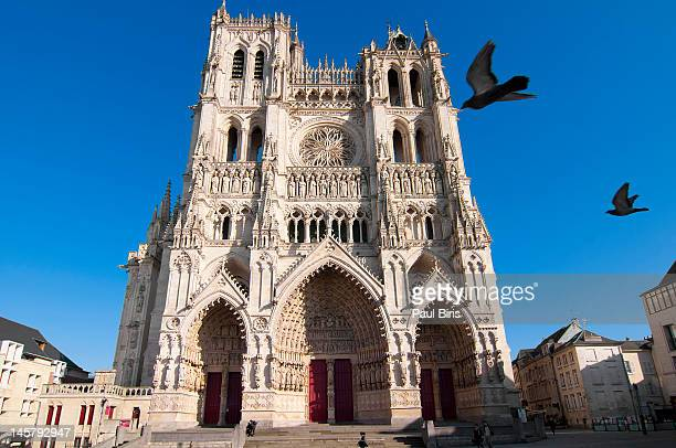 notre dame d'amiens - hauts de france stock photos and pictures