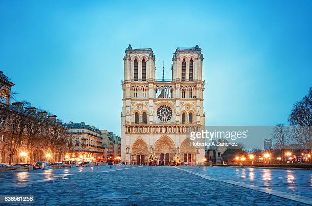 notre dame de paris cathedral - notre dame de paris stock photos and pictures