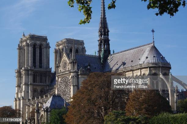 notre dame de paris - quasimodo stock pictures, royalty-free photos & images