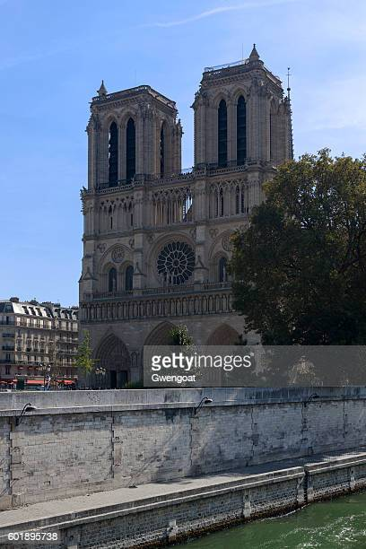 notre dame de paris - gwengoat stock pictures, royalty-free photos & images