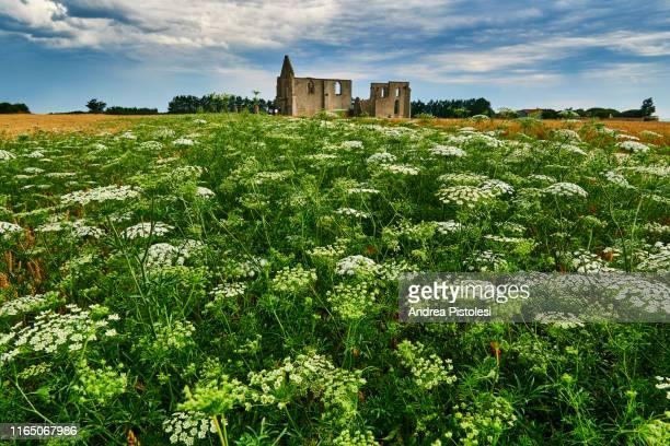 notre dame de re church ruins, nouvelle-aquitaine, france - 遺跡 ストックフォトと画像