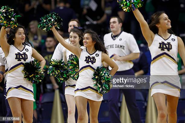 Notre Dame Fighting Irish cheerleaders seen during the game against the Pittsburgh Panthers at Purcell Pavilion on January 9 2016 in South Bend...