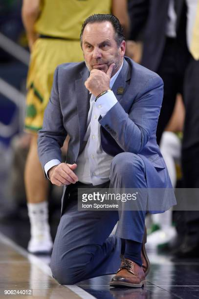 Notre Dame Fighting Irish head coach Mike Brey reacts after a play during the college basketball game between the Louisville Cardinals and the Notre...