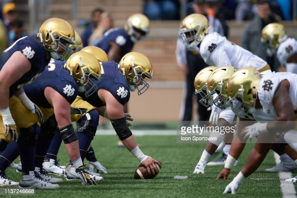 Notre Dame Fighting Irish offensive lineman Jarrett Patterson and the offensive line line up at the line of scrimmage across from the defensive line...