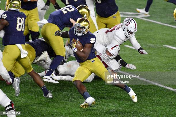 Notre Dame Fighting Irish running back Dexter Williams runs with the football in action during a college football game between the Stanford Cardinal...