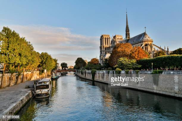 notre dame morning light - river seine stock pictures, royalty-free photos & images