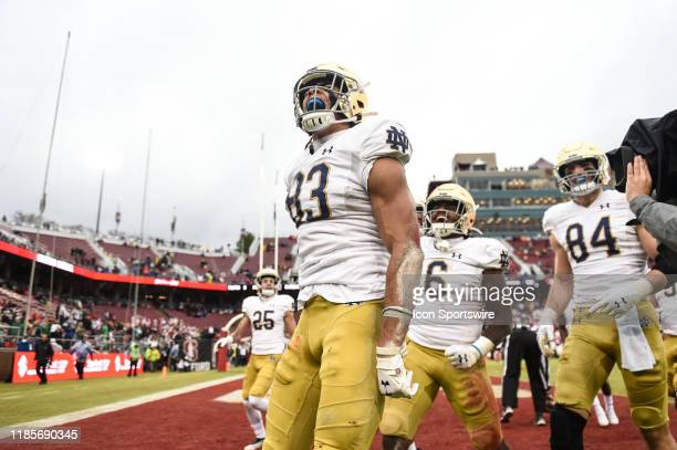 Notre Dame wide receiver Chase Claypool celebrates his touchdown reception during the college football game between the Notre Dame Fighting Irish and...