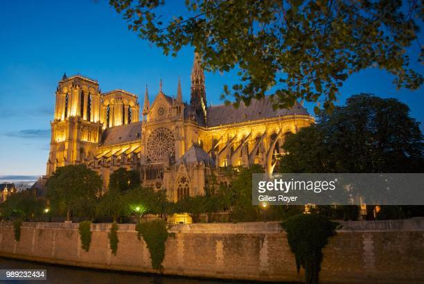Notre-Dame at night, Paris, France