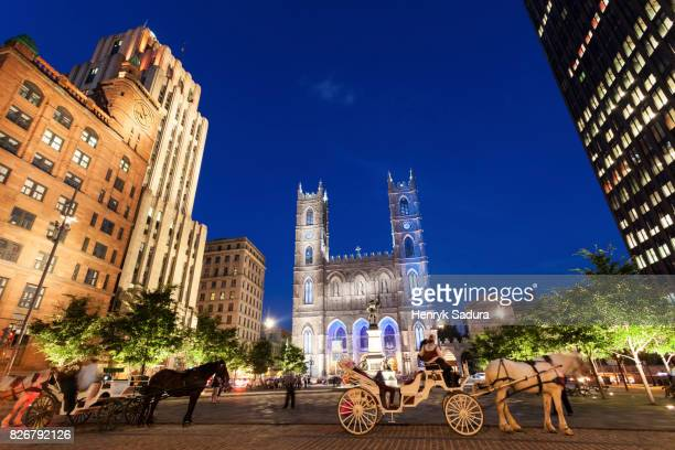 notre-dame basilica of montreal - montréal stock pictures, royalty-free photos & images
