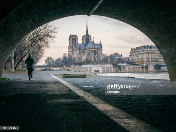 notre-dame cathedral and parisian apartments along the banks of the river siene, paris. - paris island stock photos and pictures