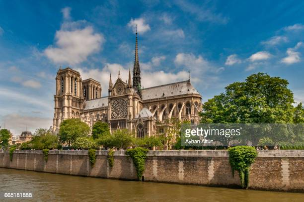 notre-dame cathedral in the spring,paris,france - notre dame de paris stock pictures, royalty-free photos & images