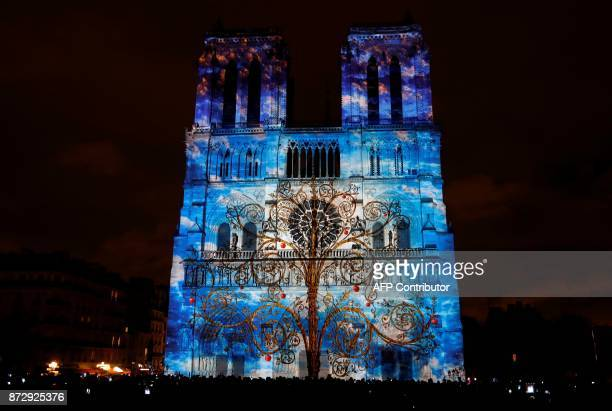 Notre-Dame de Paris Cathedral is illuminated in Paris on November 11 during a light show as part of the Armistice Day commemorations marking the end...
