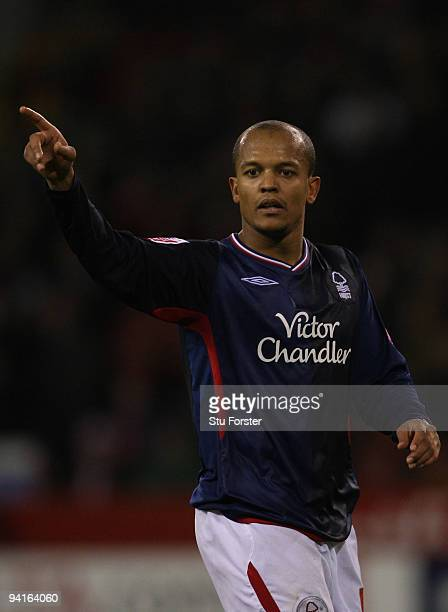 Nottingham Forest forward Robert Earnshaw makes a point during the Coca-Cola Championship game between Sheffield United and Nottingham Forest at...