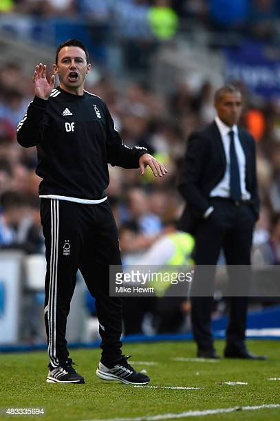 Nottingham Forest manager Dougie Freedman shouts instructions during the Sky Bet Championship match between Brighton Hove Albion and Nottingham...