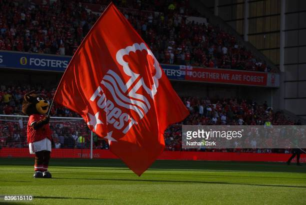 Nottingham Forest mascot flies the flag before the Sky Bet Championship match between Nottingham Forest and Leeds United at City Ground on August 26...