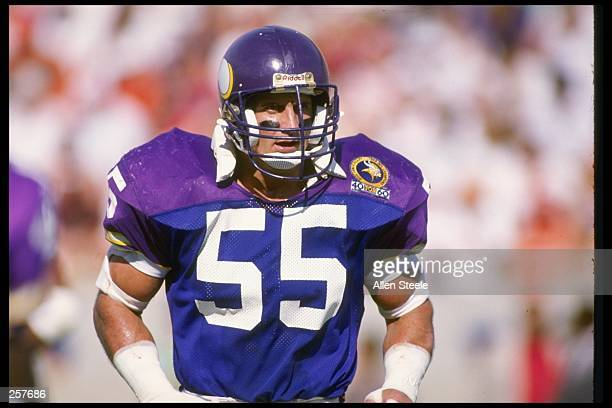 Linebacker Scott Studwell of the Minnesota Vikings looks on during a game against the Tampa Bay Buccaneers at Tampa Stadium in Tampa Florida The...