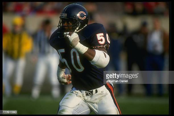 Linebacker Mike Singletary of the Chicago Bears runs down the field during a game against the Atlanta Falcons at Soldier Field in Chicago, Illinois....