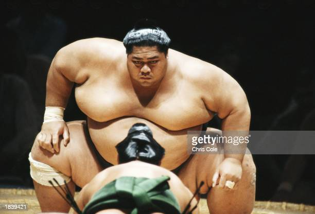Konishiki 'The Dumptruck' of Hawaii stares down at his opponent during the first Sumo Bashai held outside Japan at the Albert Hall in London England...