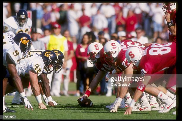 Several Stanford Cardinal and California Golden Bears players in action during a game. Mandatory Credit: Otto Greule /Allsport