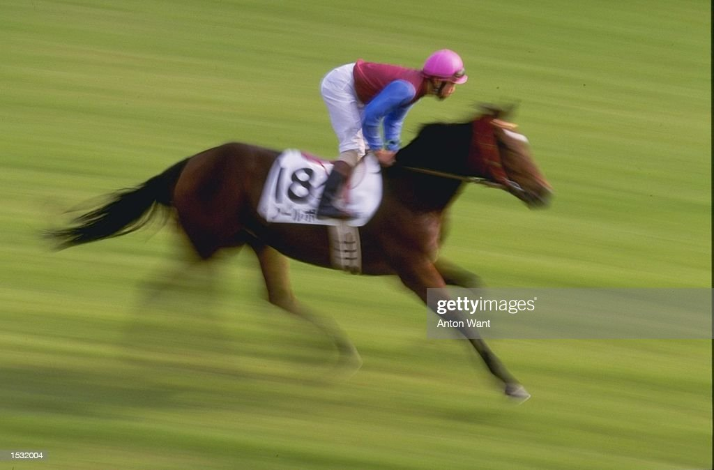 An Impression Of Horse And Jockey Galloping During The Japan Cup At Tokyo Racecourse In