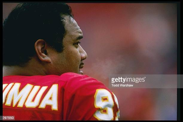 Defensive lineman Dan Saleaumua of the Kansas City Chiefs looks on during a game against the San Diego Chargers at Arrowhead Stadium in Kansas City...