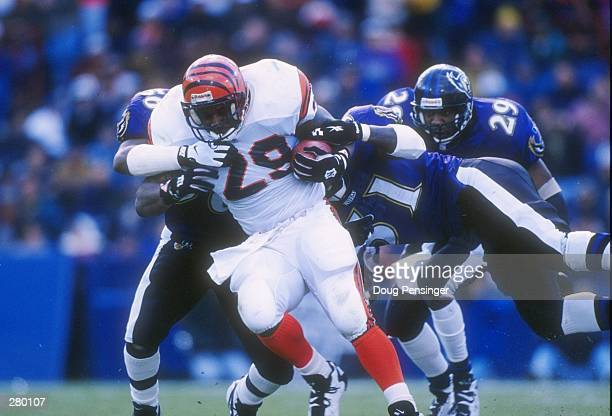 Running back Jeff Cothran is wrapped up by a number of Baltimore Ravens defensemen during the Bengals 2421 win at Memorial Stadium in Baltimore...