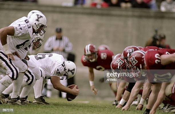General view of the offensive line for the Yale Bulldogs during the game against the Harvard Crimson at the Harvard Stadium in Cambridge...