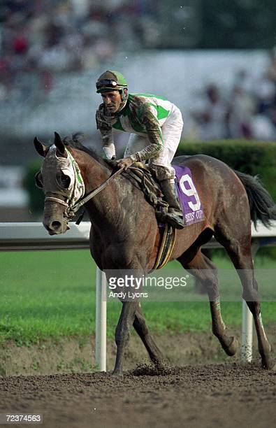 Anees ridden by Gary Stevens trots on the track after the Juvenile during the Breeders Cup at the Gulfstream Park in Hallandale Beach Florida...
