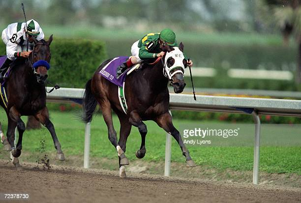 Cash Run ridden by Jerry Bailey strides down the track in the Juvenile Fillies during the Breeders Cup at the Gulfstream Park in Hallandale Beach...