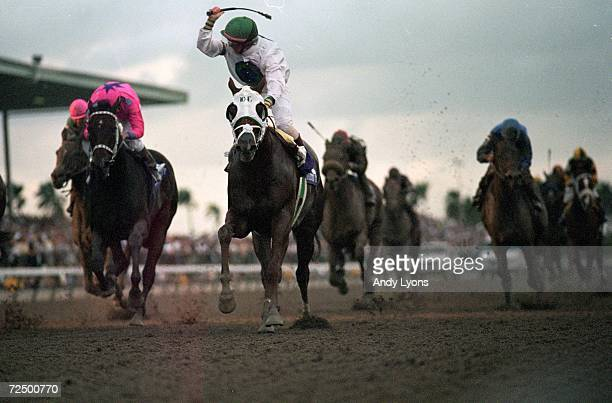 Cat Thief ridden by Pat Day celebrates the win of the Breeders Classic during the Breeders Cup at the Gulfstream Park in Hallandale Beach Florida...