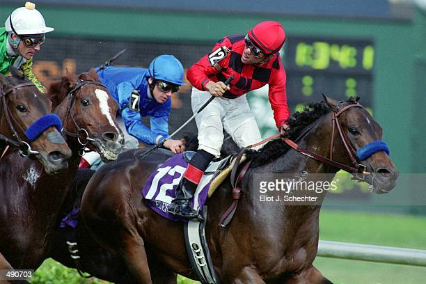 Corey Nakatani rides Silic past the finish line winning the Mile during the Breeders Cup at Gulf Stream Park in Hallandale Beach Florida Mandatory...