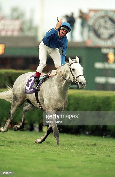 Daylami and jockey L Dettori celebrates after winning the Breeders Cup Turf at Gulfstream Park in Hallandale Florida