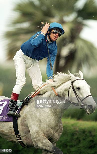 Daylami and jockey L Dettori watches for the score of the Breeders Cup Turf at Gulfstream Park in Hallandale Florida