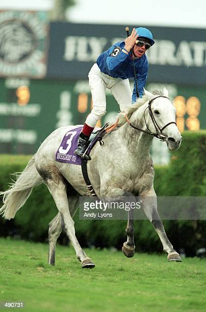 Frankie Dattori strides on Daylami in the Turf during the Breeders Cup at Gulf Stream Park in Hallandale Beach Florida Mandatory Credit Andy Lyons...