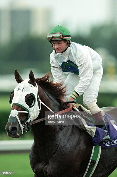 Jockey Pat Day trots to the winners circle ontop of Cat Thief after winning the Breeders Cup Classic during the Breeders Cup at Gulf Stream Park in...