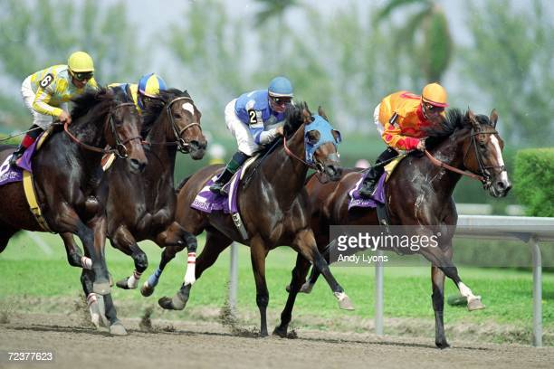Keepers Hill ridden by Kent Desormeaux strides in the middle of the pack in the Distaff during the Breeders Cup at the Gulfstream Park in Hallandale...