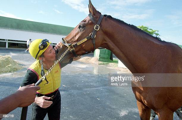 Lemon Drop Kid is kissed during his workout during the Breeders Cup at Gulf Stream Park in Hallandale Beach Florida Mandatory Credit Andy Lyons...