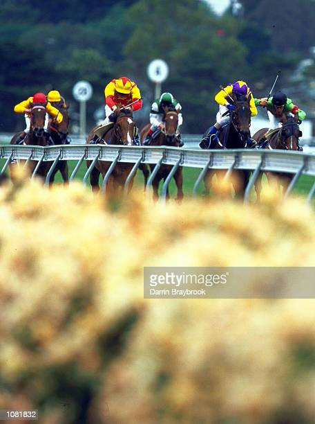 General action from the Cadbury Roses Stakes held on Crown Oaks Day at Flemington Racecourse Melbourne Australia Mandatory Credit Darrin...