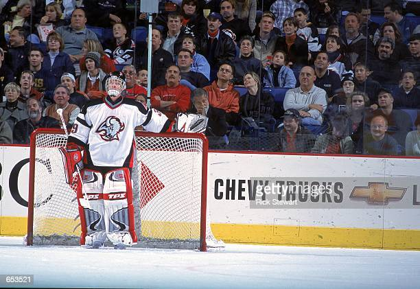 Goaltender Dominik Hasek of the Buffalo Sabres stands by the goal during the game against the Minnesota Wild at the HSBC Arena in Buffalo, New York....