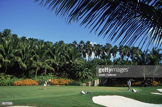 A general view of the 3rd holes green during the Tyco/ADT Championship part of the LPGA Tour Championship at the Trump International Golf Club in...