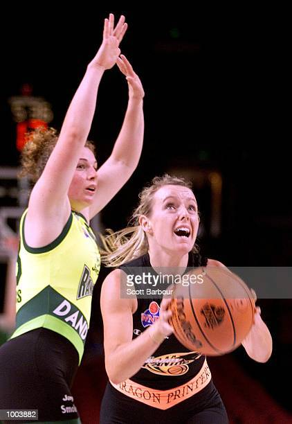 Rebecca Mackinnon of the Panthers in action during the Sydney Paragon Panthers v Dandenong Rangers match held at the Sydney Superdome in Sydney...