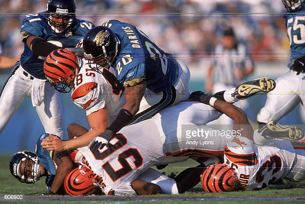 Short Safty Donovin Darius of the Jacksonville Jaguars tackling Tight End Brad St Louis during the game against the Cincinnati Bengals at the Alltel...